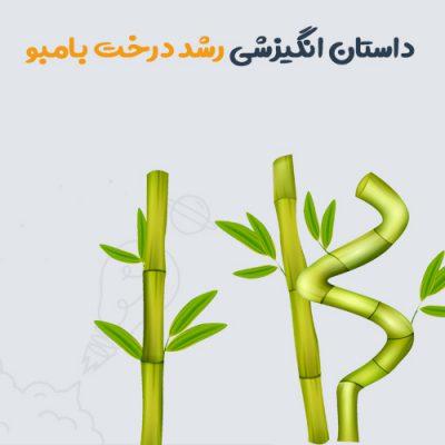 داستان انگیزشی رشد درخت بامبو